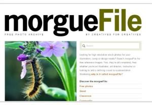 morguefiles - banco imagenes gratis
