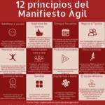 12 principios del Manifiesto Ágil #infografia #infographic #metodologíasÁgiles