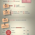 Plan de trabajo para tu marca personal #infografia #infographic #marketing – TICs y Formación – #Infografia #Marketing #Digital