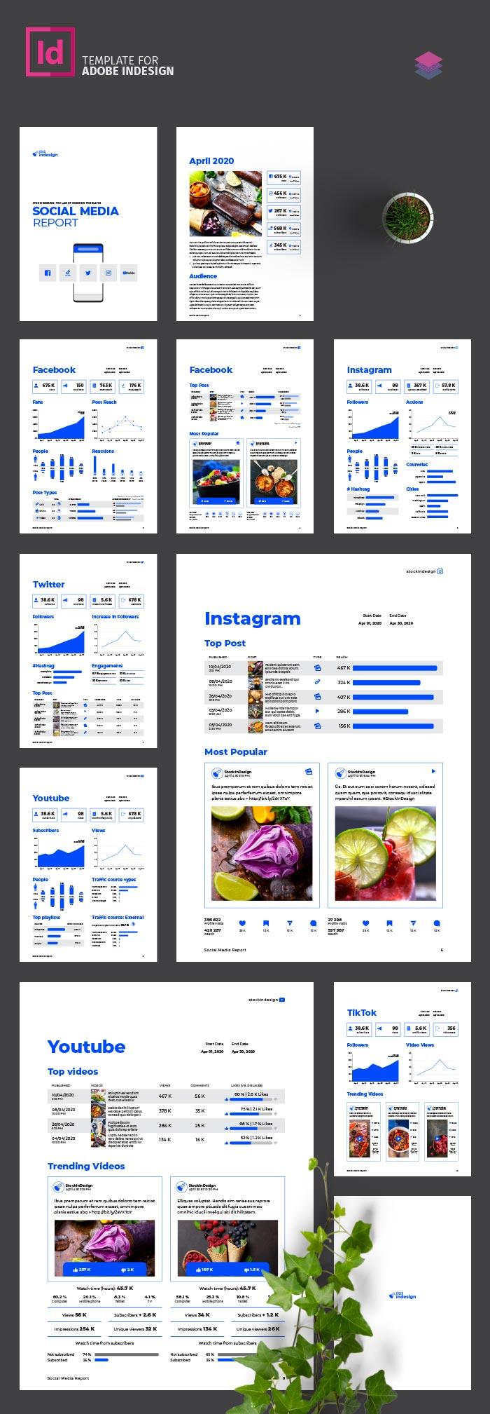 Infografia - Social Media Report