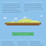 Cómo crear un servicio de atención al cliente en Twitter #infografia #socialmedia #marketing