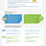 B2B vs B2C en Marketing Automation #infografia #infographic #marketing