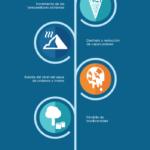 Desde el Protocolo de Kioto hasta la Cumbre de París #infografia #medioambiente