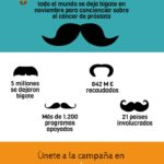 Qué es Movember #infografia #infographic